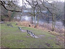 NZ0416 : Benches overlooking the River Tees by Oliver Dixon
