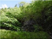 NS2698 : Quarry at the foot of Craggan Hill by Richard Webb