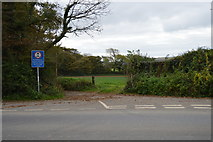 SX5452 : Erme-Plym Trail off A379 by N Chadwick