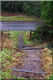 SP0575 : Steps down to Brock Hill Lane, Forhill, Worcs by P L Chadwick