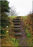 SP0575 : Steps up to Forhill Picnic Place, Forhill, Worcs by P L Chadwick