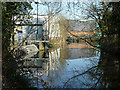 TQ2865 : River Wandle above former mill by Robin Webster