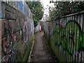 SZ1192 : Boscombe: graffiti lines both sides of footpath F06 by Chris Downer