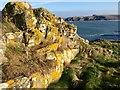 SM7830 : Lichen-covered Rocks by Alan Hughes