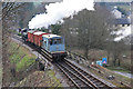 SX7466 : Goods train from Buckfastleigh by Chris Allen