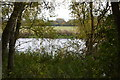 TL3071 : River Great Ouse by N Chadwick