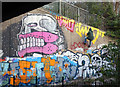 TQ3685 : Absail Artist by Des Blenkinsopp