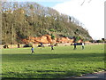 SY1287 : Football on The Ham, Sidmouth by David Hawgood