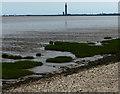 TA2512 : View across the Pyewipe Mudflats by Mat Fascione