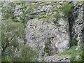 NN6795 : Creag Dhubh by Richard Webb