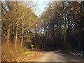 TQ4352 : Greensand Way near Westerham by Malc McDonald