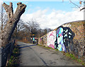 TQ3487 : Graffiti on Horseshoe Bridge by Des Blenkinsopp