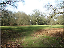TG2202 : Meadow on Dunston Common by Evelyn Simak