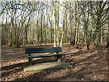 TG2202 : Seat on Dunston Common by Evelyn Simak