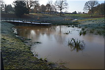 TQ5940 : New lake, Grosvenor Park by N Chadwick