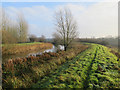 TL6198 : Bridleway by River Wissey by Hugh Venables
