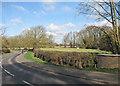 TL4354 : North of Brasley Bridge by John Sutton