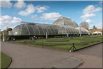 TQ1876 : Palm House, Kew Gardens by Christine Matthews