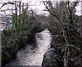ST2196 : Downstream along the Ebbw River, Newbridge by Jaggery