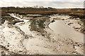 TF7644 : Titchwell Marsh by Richard Croft
