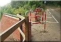 SX9065 : Cycle path, Torre by Derek Harper