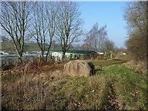 NY6220 : Erratic boulder, outside Sockenber Park by Christine Johnstone