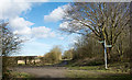 NZ3446 : Meeting of bridleways near Low Moorsley by Trevor Littlewood