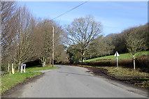 ST9929 : Catherine Ford Lane, Fovant by Robin Webster