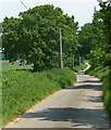 TF9523 : Country road near Gateley by Stephen Richards
