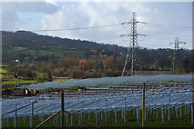 ST0209 : Mid Devon : Stoneshill Solar Farm by Lewis Clarke
