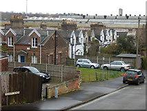 TG2407 : Hardy Road, Norwich by Stephen McKay