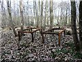 TQ7818 : Iron table bases for dormouse protection in Churchland Wood by Patrick Roper