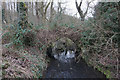 SE3301 : Disused bridge over Rockley Dike by Ian S