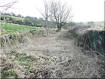 SE1421 : Quarry Road, Rastrick by Humphrey Bolton