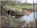 SP0291 : Inflow pipe to Swan Pool by Richard Law