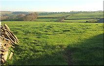 SS5318 : View towards Kingscott by Derek Harper