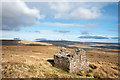 NY8131 : Ruined building at Cow Rake Rigg by Trevor Littlewood