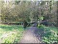 SJ3481 : Footbridge in Dibbinsdale by Raymond Knapman