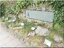 ST5673 : Herbaceous border, Clifton Suspension Bridge by Oliver Dixon