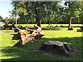 SP3165 : Dismantled Horse Chestnut, Victoria Park play area, Leamington by Robin Stott