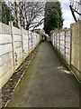 SJ8446 : Newcastle-under-Lyme: fenced footpath in a housing estate by Jonathan Hutchins