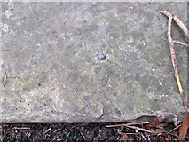 SH5873 : Possible rivet benchmark (wide-view) in Garth gardens, Bangor by Meirion
