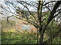 SE7845 : Mount  Pleasant  a  derelict  building by Martin Dawes