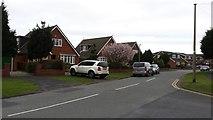 SD2806 : Houses in Langdale Avenue by Peter Mackenzie
