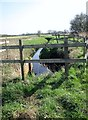 SE7844 : Unnamed  drainage  ditch  next  to  the  Pocklington  Canal by Martin Dawes