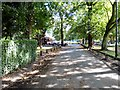 SJ8094 : Ice-cream van in Longford Park by Gerald England