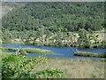 NH3938 : River Glass by Richard Webb