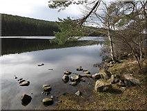 NH6590 : Eastern end of Loch Migdale by Julian Paren