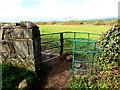 SS8079 : Kissing gate across a public footpath near Porthcawl by Jaggery
