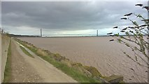 TA0025 : Trans Pennine Trail between North Ferriby and Hessle by Chris Morgan